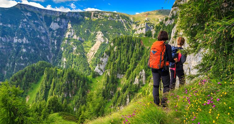 hIKERS ON A NARROW TRAIL WITH MOUNTAINS USING HIKING STICKS