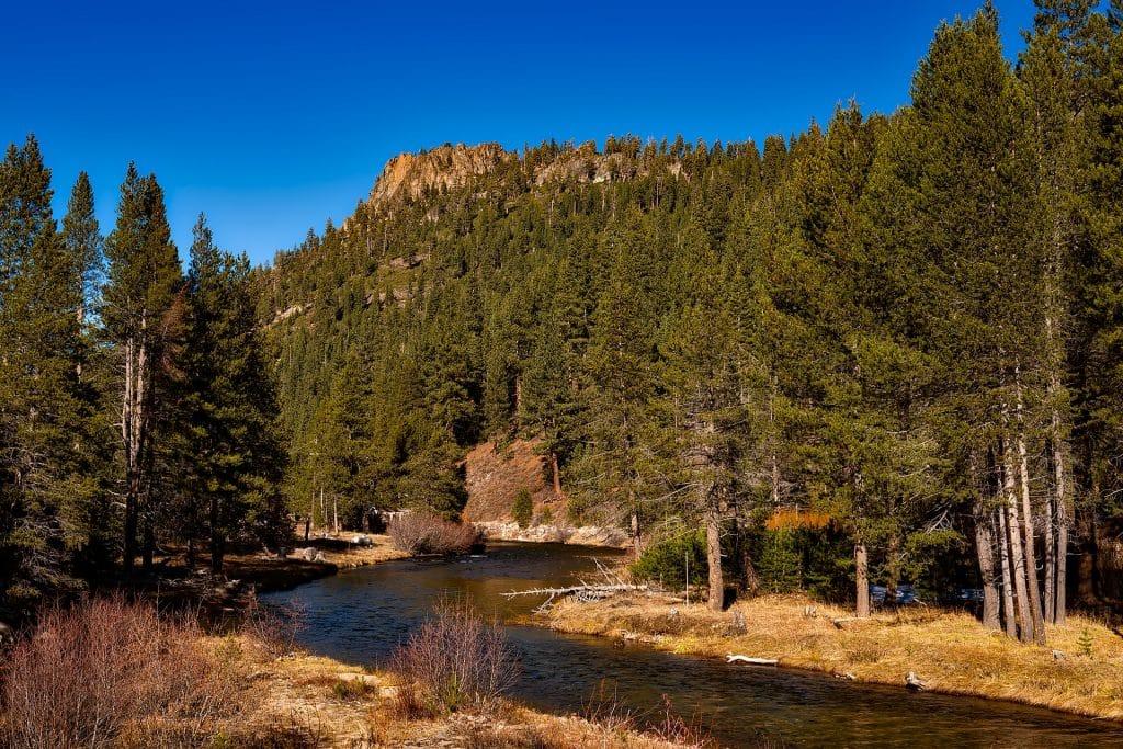 Carbon Fiber Hiking Poles River Scenery