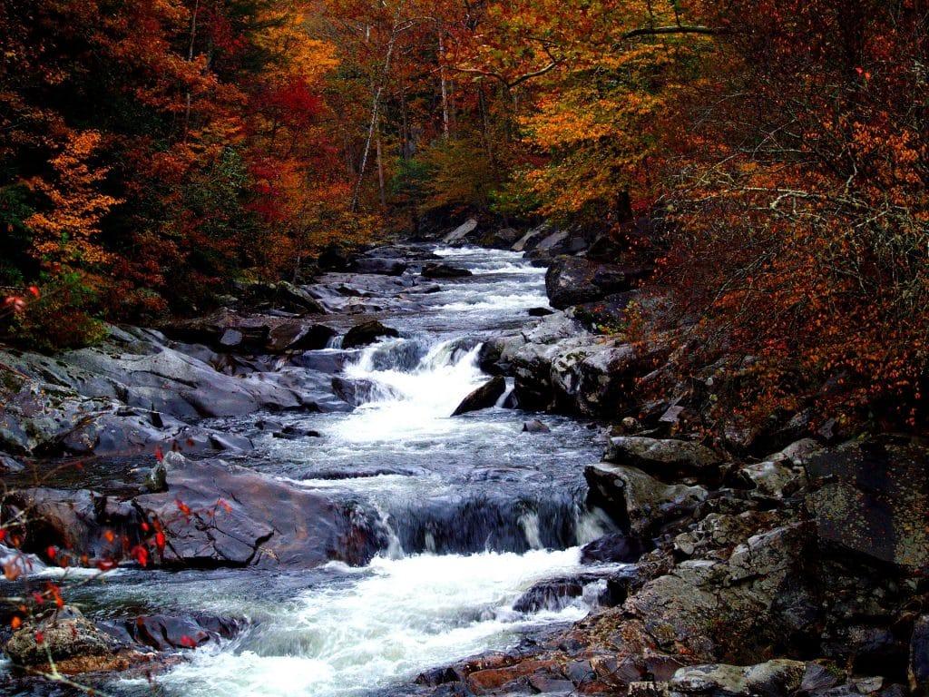 trekking pole Help Enjoy Streams